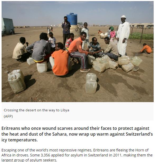 Eritrea Article.PNG