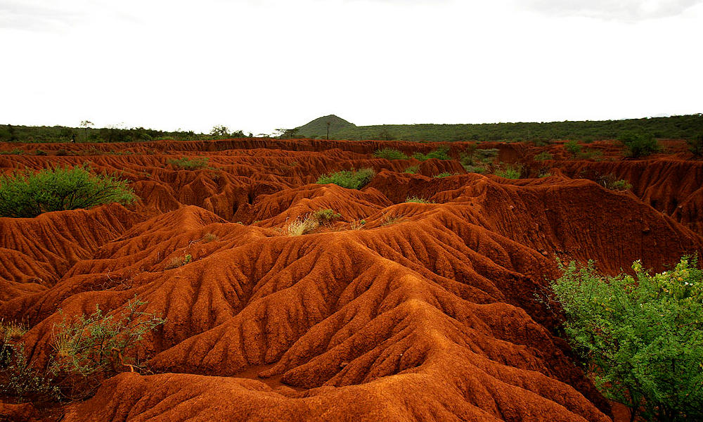 Erosion-1600x600px.jpg
