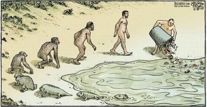 Human evolution 001.jpg