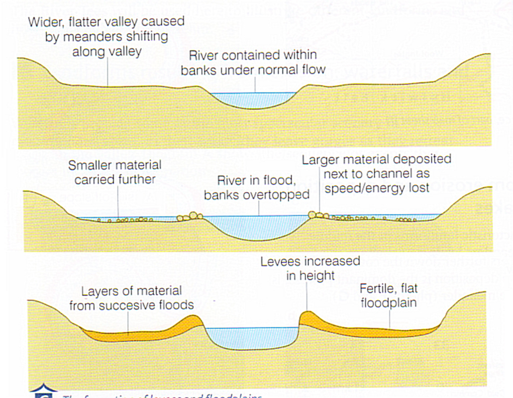 Levee formation.png