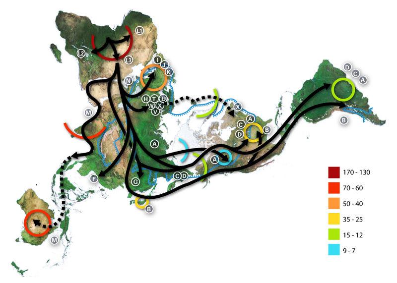 Map-of-human-migrations.jpg